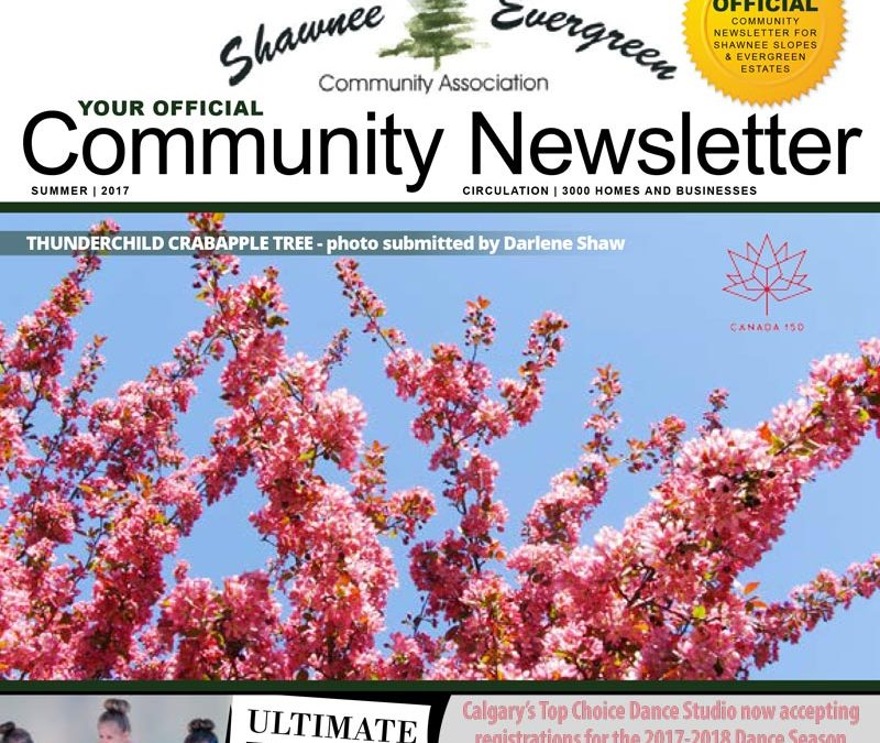 SECA Summer 2017 Newsletter