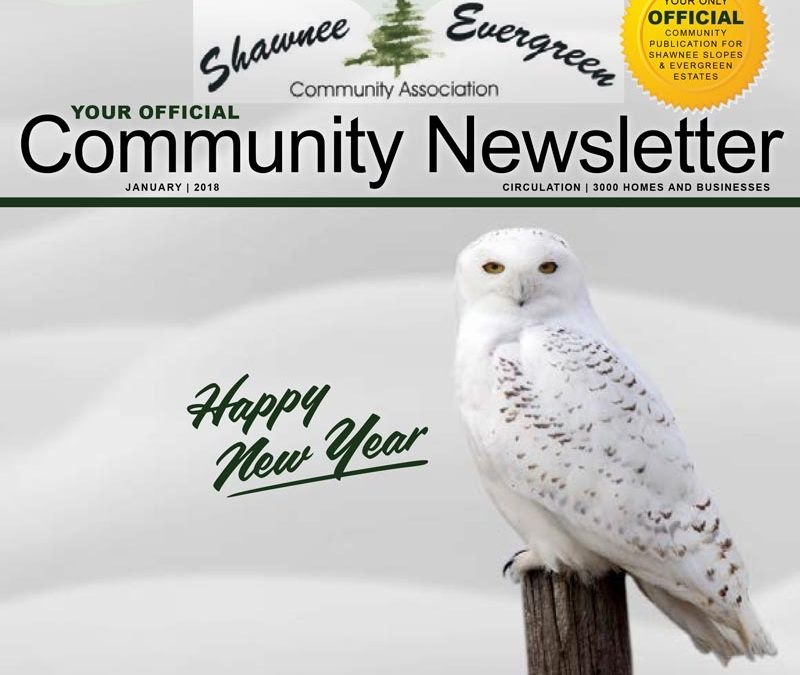 SECA January 2018 Newsletter