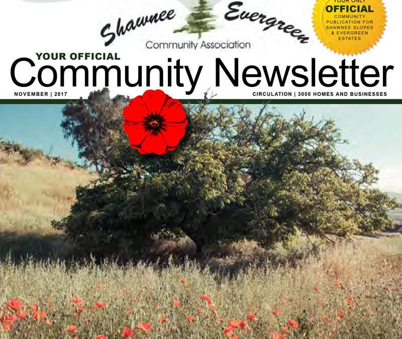 SECA November 2017 Newsletter