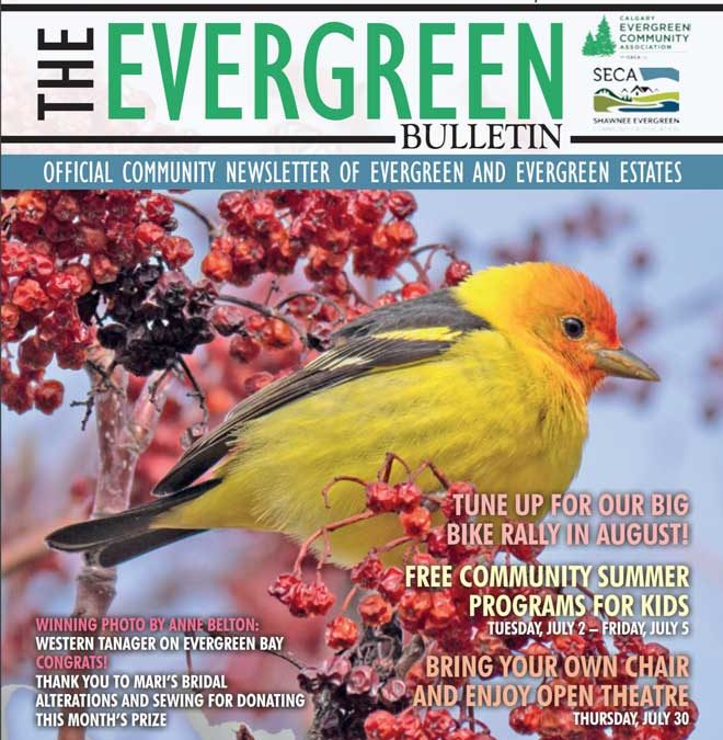 Evergreen Bulletin July 2019