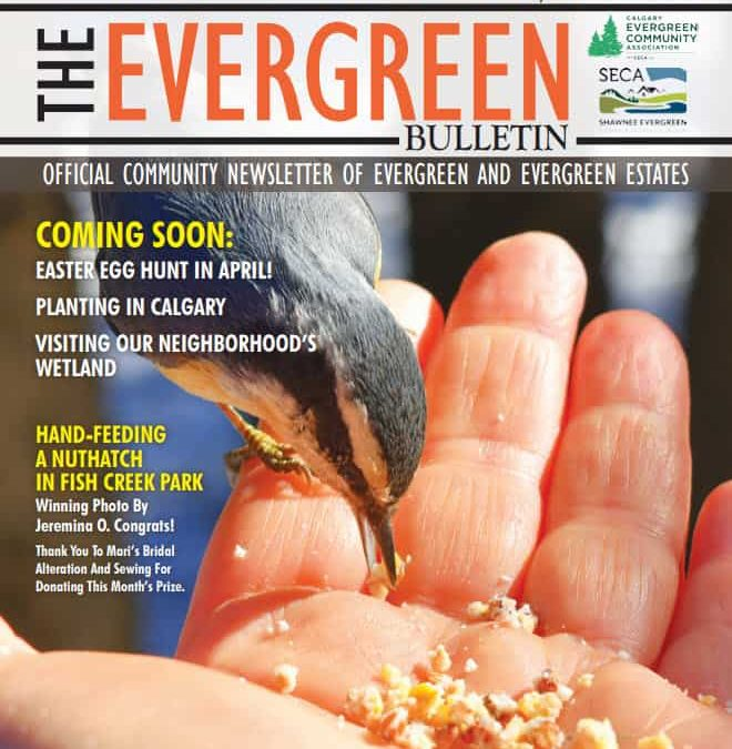 Evergreen March 2020